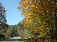 blue ridge parkway burnsville nc